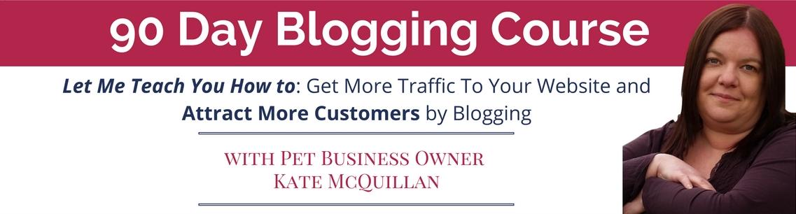 90 Day Blogging