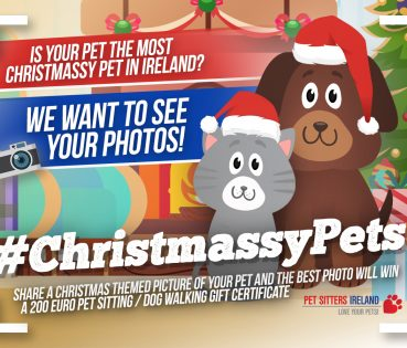 christmassypets_fb_post