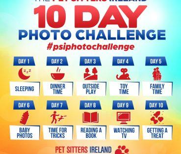 psi_photo_challenge_2